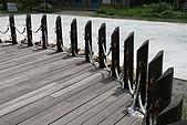 08向天湖、神仙谷、護魚步道、賽夏+:IMG_0518.JPG