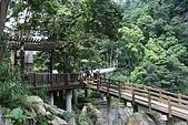 08向天湖、神仙谷、護魚步道、賽夏+:IMG_0533.JPG