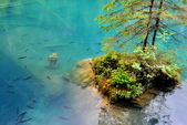 瑞士-藍湖:藍湖的少女雕像一.jpg