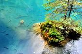 瑞士-藍湖:藍湖的少女雕像二.jpg