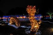 彰化-鹿港2012燈會:文武廟燈區十九.jpg
