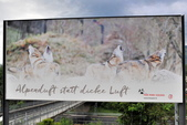 瑞士-瑞吉山:瑞吉山的廣告看板二.jpg