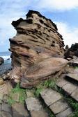 東北角海岸-南雅:南雅奇石十.jpg