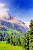 瑞士-鐵力士山:上鐵力士山途中景色四.jpg