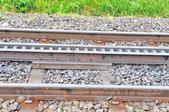 瑞士-瑞吉山:爬山火車的齒軌設計.jpg