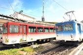 瑞士-瑞吉山:Rigi-Kulm 站紅藍兩線列車二.jpg