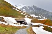 瑞士-菲斯特:菲斯特纜車站附近景色九.jpg
