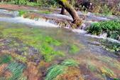 克羅埃西亞-科卡國家公園:科卡國家公園景色三十三.jpg