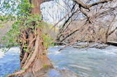 克羅埃西亞-科卡國家公園:科卡國家公園景色八十五.jpg