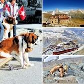 瑞士-高奈葛拉特觀景台:相簿封面