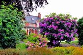 英國-威廉堡與露絲小鎮:威廉堡海岸公路街景六.jpg