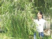 2004年前旅遊:Imag0487.jpg