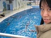 2007日本蜜月行:P1170303 (Medium).JPG