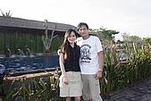 峇里島:DPP_BALI0026-OK.jpg