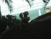 080209 樂天樂園 롯데월드:照片 007.jpg