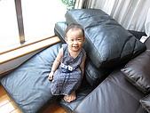 一歲七個月:小淑女球球