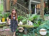 全家♥ 旅遊 - 南投旅遊:媽咪在仙朵拉童話森林
