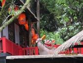全家♥ 旅遊 - 南投旅遊:溪頭。妖怪村