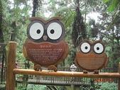全家♥ 旅遊 - 南投旅遊:溪頭的可愛貓頭鷹