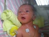 寶貝兒子-小少澤:1800397837.jpg