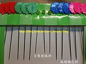 小氣美妝冠軍王:梅花針、軟珠針比較.jpg
