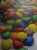 2011年2月中過年(四天假)隨意拍:2011.2.3  自然博物館巧克力 (5).JPG