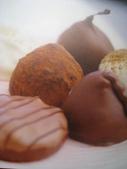 2011年2月中過年(四天假)隨意拍:2011.2.3  自然博物館巧克力 (6).JPG