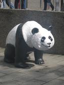 2011年11月中(台北之旅編)隨意拍:2011.11.12 a台北木冊動物園  (14).JPG