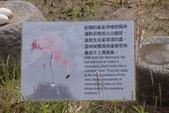 2011年11月中(台北之旅編)隨意拍:2011.11.12 a台北木冊動物園  (20).JPG