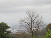 2014.2.16 五峰旗瀑布、礁溪溫泉公園、員山機器人燈會、仁山植物園:IMG_1751.JPG