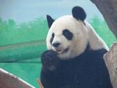 2014.11.29 台北動物園:動物園 (15).jpg