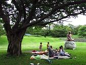 2015.7.22 北藝大寶萊納啤酒花園餐廳:台藝大 (17).jpg