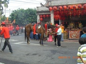 六巷村迎媽祖:1245529833.jpg
