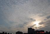 2010 0303:j303 031 板橋 東方6.JPG