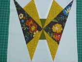 本科---pattern:蝴蝶 (2).JPG