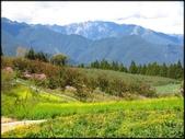 中部旅遊:福壽山農場_057.JPG