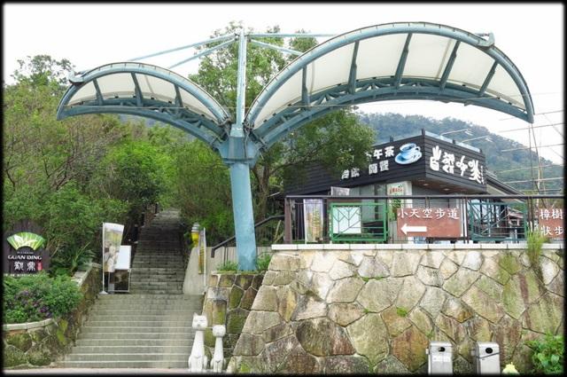 貓空樟樹步道、杏花林:貓空逍遙遊_02.jpg