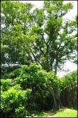 基隆旅遊、情人湖、海興森林步道、七堵車站、紅淡山:串珠二沙灣步道_012.jpg