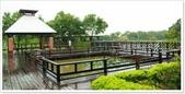 大溪老街‧公園、八德埤塘生態公園、大古山步道:八德埤塘生態公園-1_013.jpg