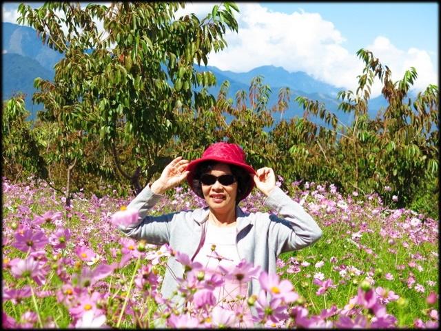 中部旅遊:福壽山農場_084.jpg