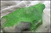 三芝、石門地區:老梅綠石槽_687.JPG