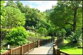 三峽風景區:天南寺_031.jpg