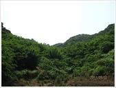 三芝、石門地區:石門茶山步道_9216.JPG