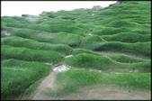 三芝、石門地區:老梅綠石槽_692.JPG