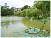 大台北地區:大湖公園-1_007.jpg