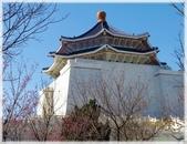 立法院、台北賓館、自由廣場、中正紀念堂:梅櫻爭豔_066.jpg