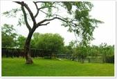 大溪老街‧公園、八德埤塘生態公園、大古山步道:八德埤塘生態公園-1_001.jpg