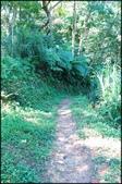 三峽風景區:紫微聖母環山步道探路_042.jpg