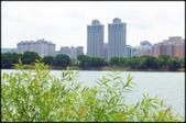桃園地區風景區:1-16號大圳埤塘_007.jpg