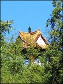 中部旅遊:楓之谷_079.jpg